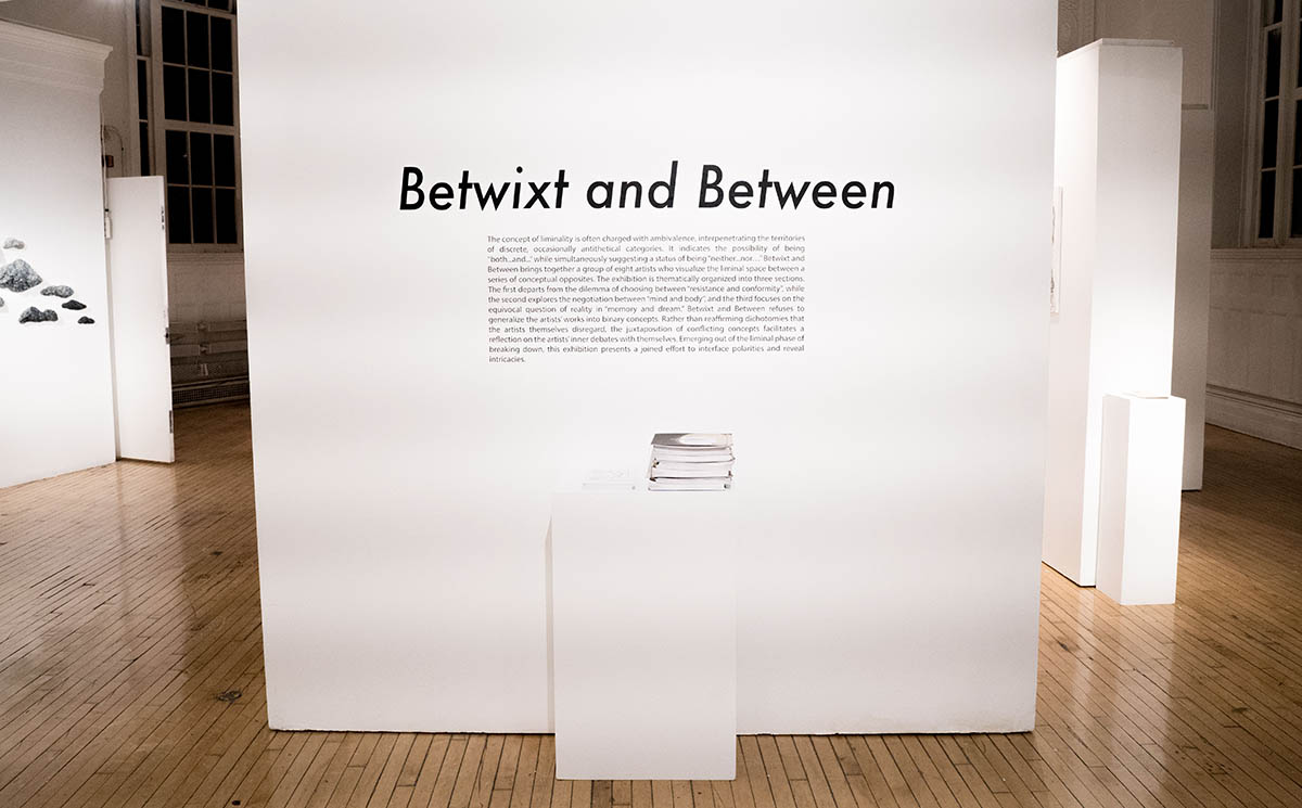 Title wall of the exhibition.
