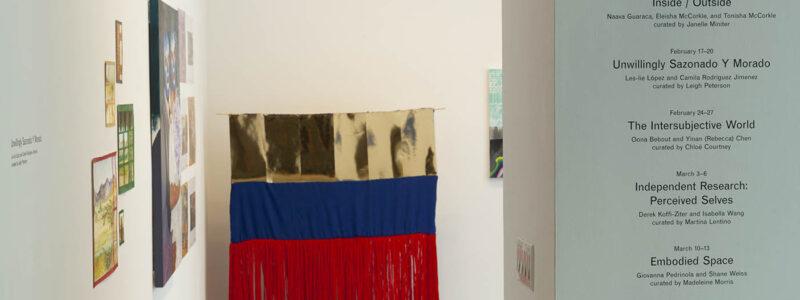 Exhibition Entrance to UNWILLINGLY SAZONADO Y MORADO